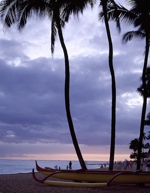 Boat and Palm tree outline at a Hawaii Beach.
