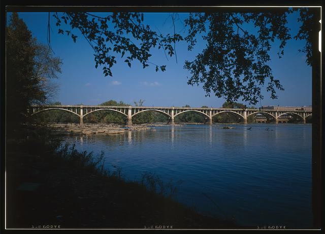 Congaree National Park: Gateway to a Historical Legacy
